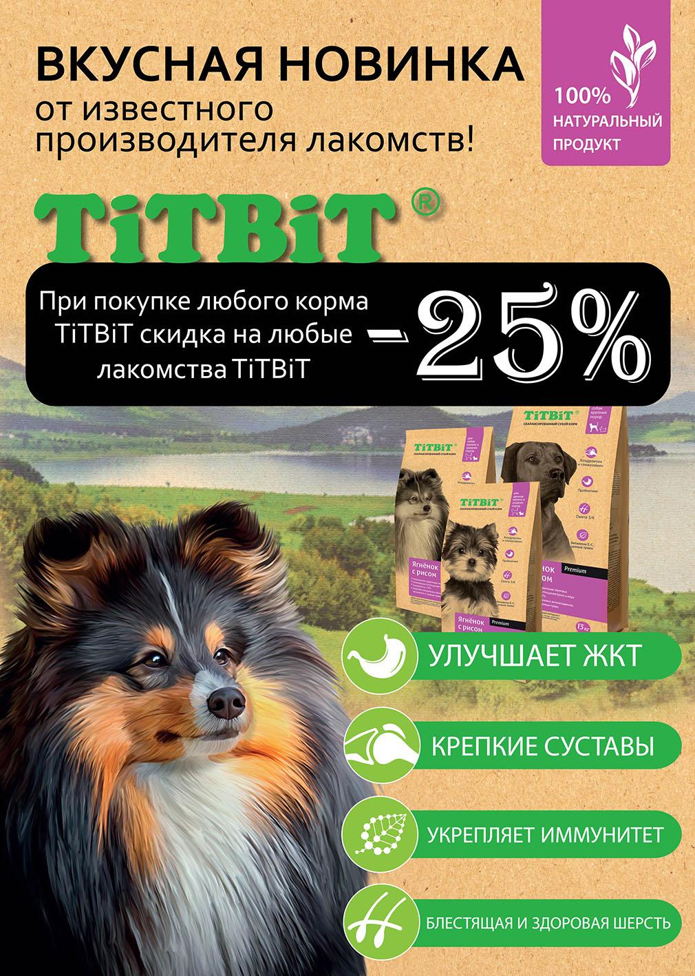 Бесплатное продвижение сайтов о собаках контекстная реклама и оптимизация сайта продвижение сайта и вывод сайтов